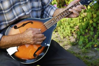 best mandolin brands and makers